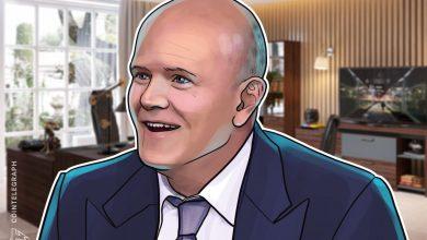 """صورة Novogratz تسمي أخبار Bitcoin الخاصة بـ PayPal """" الطلقة التي سمعت حول العالم في وول ستريت """""""