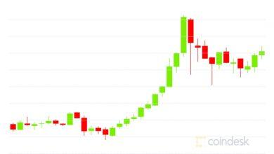 صورة التفاف السوق: قمة بيتكوين على الإطلاق تصل إلى 19،850 دولارًا أمريكيًا مع تحول سوق خيارات إيثر إلى صعود كبير