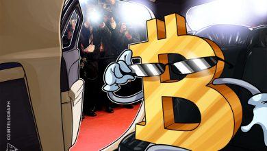 أربعة من أصل 70 من الأصول المشفرة من حيث القيمة السوقية هي Bitcoin