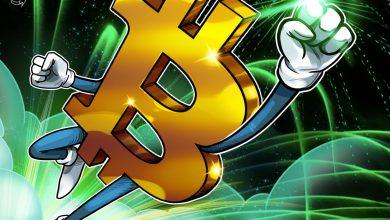 """يتوقع صندوق التحوط سعر بيتكوين بقيمة 115 ألف دولار وهبوط العملات البديلة """"المضاربة"""""""