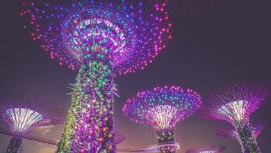 يضيف Gemini Exchange العملة المحلية ، DeFi Tokens في توسع سنغافورة